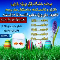 عیدانه زاکی-پلاتس/شافل/بادی بیوتی/ایروبیک/فیتنس 3ماهه