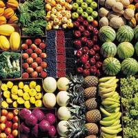 بانک اطلاعات فروشندگان میوه و تره بار کشور