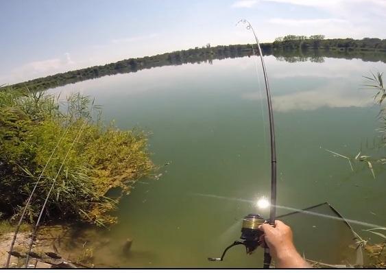 ماهیگیری کپور در کرواسی