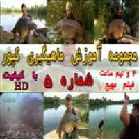 آموزش ماهیگیری کپور شماره 5
