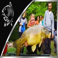 مجموعه ماهیگیری nash 2015