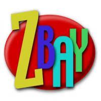 توضيحات فروش دامنه zbay.ir