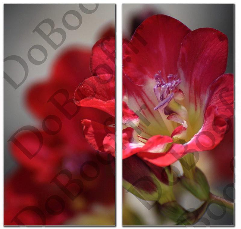تابلو دو تکه عمودی طرح گل سرخ