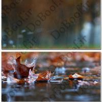 تابلو دو تکه افقی طرح باران پاییزی