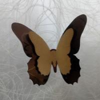 پروانه تزئینی شماره 112