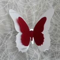 پروانه تزئینی شماره 111