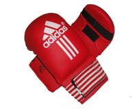 دستکش کاراته حرفه ای Adidas