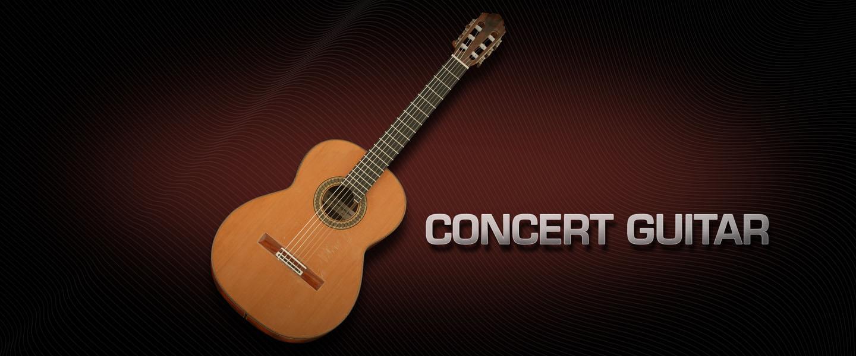 خرید اینترنتی وی اس تی گیتار نایلون Vienna Concert Guitar Nylon