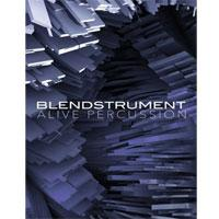 خرید اینترتی وی اس تی ریتمیک پرکاشن تکسچر 8DIO Blendstrument Alive Percussion