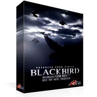 وی اس تی پروفشنال درام سبک پاپ 8DiO Advanced Drum Series Blackbird