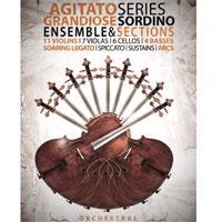 وی اس تی استرینگز سوردینو 8Dio Agitato Sordino Strings