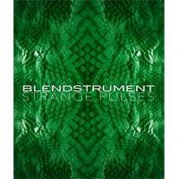 وی اس تی آرپژ برپایه تکسچر 8dio Blendstrument Strange Pulses
