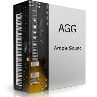 وی اس تی گیتار فندر استراتوکاستر Ample Sound AGF 2
