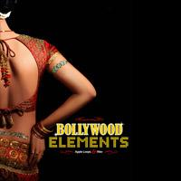 لوپ و ریتم هندی Big Fish Audio Bollywood Elements