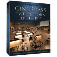 خرید اینترتی وی اس تی گروهی نوازی هورن Cinesamples CineBrass Twelve Horn Ensemble