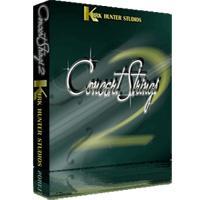 خرید اینترتی وی اس تی استرینگز Kirk Hunter Studios Concert Strings 2