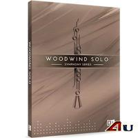 خرید اینترتی وی اس تی سازهای بادی چوبی سمفونی Native Instruments SYMPHONY SERIES WOODWIND SOLO