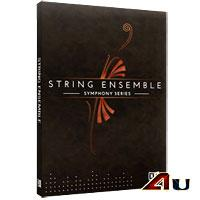 وی اس تی استرینگ ارکسترال Native Instruments SYMPHONY SERIE STRING ENSEMBLE