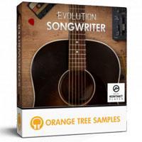 وی اس تی گیتار آکوستیک با سیم های استیل Orange Tree Samples Evolution Songwriter