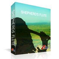خرید اینترتی وی اس تی فلوت چوپان Precisionsound Shepherds Flute