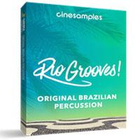 خرید اینترتی وی اس تی پرکاشن برزیلی !Cinesamples Rio Grooves