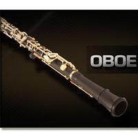 وی اس تی ابوا Vienna Symphonic Library Oboe