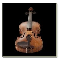 وی اس تی تک نوازی ویولن Vienna Symphonic Library Violin