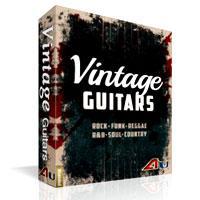 کالکشن بر پایه ریتم و لوپ گیتار Big Fish Audio Xtended Series Vintage Guitars