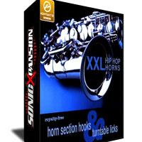 خرید اینترتی وی اس تی ساز هورن سبک رپ big fish audio XXL Hip Hop Horns