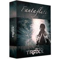وی اس تی فلوت با صدایی عجیب Sampletraxx FantaFlute