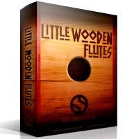 وی اس تی فلوت بومی هندی Soundiron Little Wooden Flutes