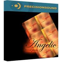 وی اس تی کرال و وکال پد Precisionsound Angelic Vocal Pads 1 - 6