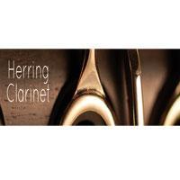 خرید اینترتی وی اس تی کلارینت Embertone Herring Clarinet