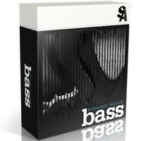 خرید اینترتی وی اس تی کنترباس Straight Ahead Bass