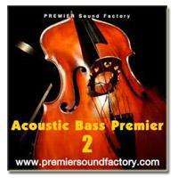 خرید اینترتی وی اس تی کنترل باس آکوستیک Premier Sound Factory Acoustic Bass Premier 2
