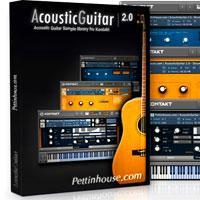 خرید اینترتی وی اس تی گیتار آکوستیک PettinHouse AcousticGuitar 2.0