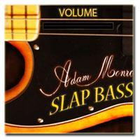 خرید اینترتی وی اس تی گیتار الکتریک باس فندر Adam Monroe Music Slap Bass