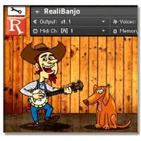 خرید اینترتی وی اس تی گیتار بانجو Realitone RealiBanjo