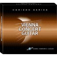 خرید اینترتی وی اس تی گیتار نایلون Vienna Concert Guitar Nylon