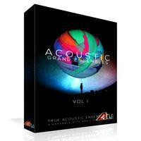 خرید اینترتی وی اس تی 8Dio Acoustic Grand Ensembles Vol. 1
