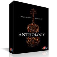وی اس تی استرینگز 8Dio Anthology Strings