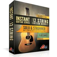 خرید اینترتی وی اس تی سولو و ریتم نوازی گیتار 12 سیمی 8Dio Instant 12-String Guitar