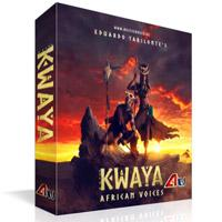 خرید اینترتی وی اس تی گروه کر آفریقایی Best Service Kwaya