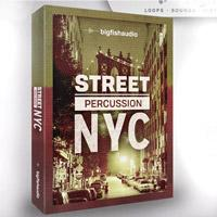 لوپ پرکاشن بریک بیت Big Fish Audio Street Percussion NYC