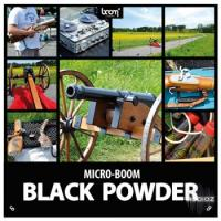 جلوه صوتی توپ Boom Library Black Powder