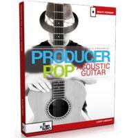 خرید اینترتی ریتم گیتار آکوستیک سبک پاپ In Session Audio Producer Pop Acoustic Guitar