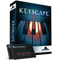 خرید اینترتی وی اس تی فوق العاده سازهای کلاویه ای Spectrasonics - Keyscape Library for Omnisphere 2
