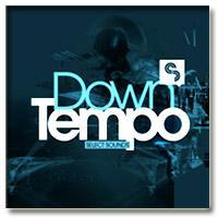 آموزش ساخت موزیک سبک دان تمپو در اف ال استودیو