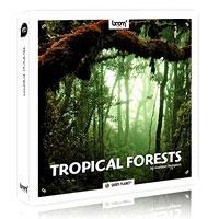 خرید اینترتی جلوه صوتی صداهای موجود در جنگلهای گرمسیری Boom Library Tropical Forests