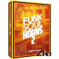 خرید اینترتی لوپ سازهای برنجی مخصوص سبک فانک Big Fish Audio Funk Soul Horns 2